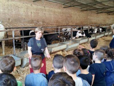 fattoria didattica agricola angelucci-1