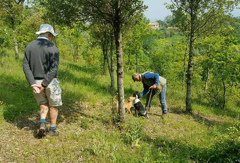 truffle hunt cooking class umbria