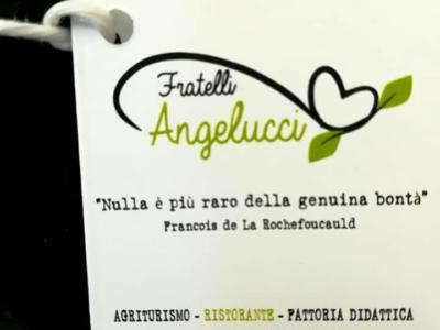 Olio-agricola-angelucci